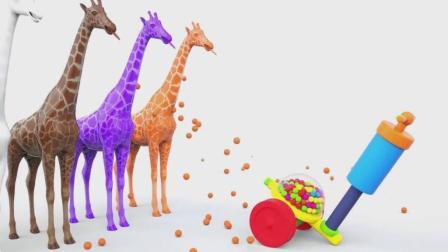 亮亮玩具长颈鹿学习颜色, 汽车动画学习英语, 婴幼儿宝宝教育游戏视频974