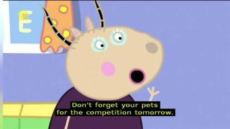 Peppa Pig Series 4 The Pet Competition 加舟英语小猪佩奇第4季英文字幕
