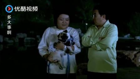 妻子刚把狗放下来, 结果一条大狗过来, 吓得丈夫躲在妻子身后, 太弱了!