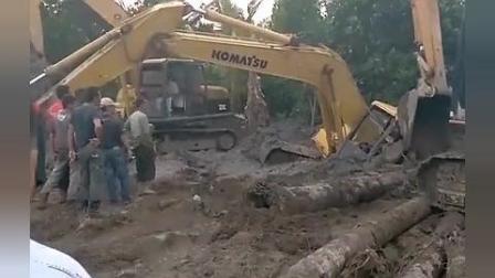 小松挖掘机陷入沼泽, 老板请来卡特救援, 看样子这钱白花了!