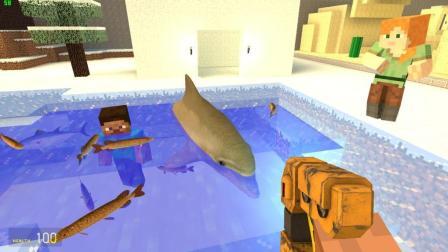 GMOD游戏史蒂夫把小美的海豚放生了