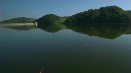 在湖库中钓友狂拉大鲤鱼, 就这样一天都能够钓上来不少渔获