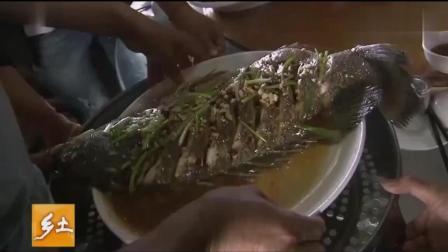 渔民用大网捕捞到好多海鲜, 看完渔民吃海鲜真的长见识了