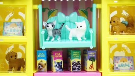 丽佳娃娃的宠物商店儿童玩具屋
