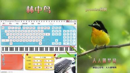林中鸟-EOP键盘钢琴免费钢琴谱双手简谱下载