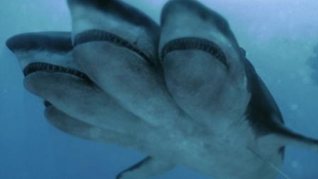 五分钟看完《夺命五头鲨》, 人类污染环境, 导致鲨鱼变异