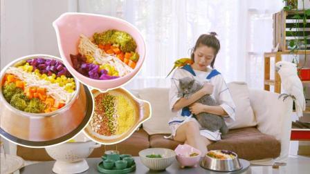 把宠物都宠成大爷了, 皇室彩虹餐, 营养均衡长的更好看