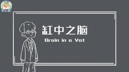 三分钟看懂神级脑洞缸中之脑