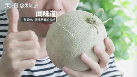 网纹瓜怎么挑? 一看二模三闻, 有了这几招挑的瓜百发百中个个香甜