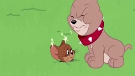 猫和老鼠: 沙皮狗为儿子树立好榜样, 总拿猫做实验, 可怜的汤姆