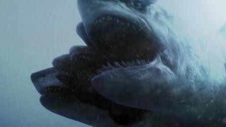 凶猛的五头鲨鱼爱吃水中垃圾, 饿疯了连自己都吃, 最后却卡了!
