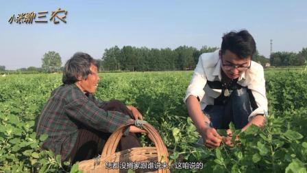 """75岁农村老太在农田里打工, 一天25元, 外孙看到后""""怒""""了"""
