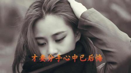 甜歌皇后李玲玉一首经典老歌 怀旧情歌《是酒也是泪》, 好听极了