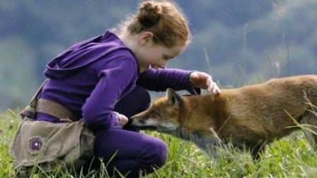 一部人与动物的电影, 女孩和狐狸产生了感情, 最后她选择这样做