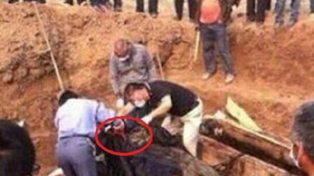 千年古墓发现纯金活鱼, 挖出一看令人叹服, 实在太罕见了