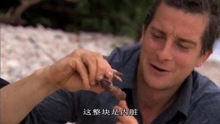 贝爷真知道吃啊, 寄居蟹只吃大钳子, 其他扔掉!