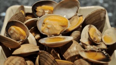 花蛤不会泡总有沙子? 盐水里加点它, 花蛤吐沙又快又干净!