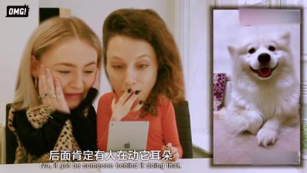 老外看中国的海草舞, 觉得中国人都是天才