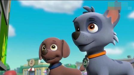 汪汪队立大功4: 莱德和狗狗好奇船长的变色龙