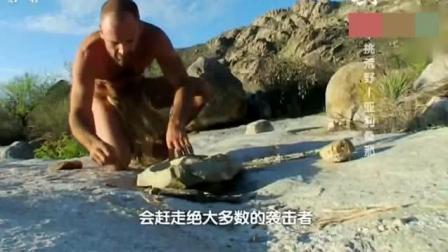 野外求生: 生存哥在小溪边用坛子炖鱼, 放了一大盆子青菜!