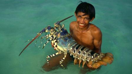 潜入海底捕鱼和大龙虾, 效率比打捞还高, 最后烹饪令人尴尬