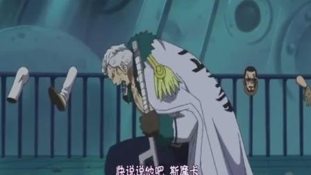 动画片 想知道他是怎么把维尔戈粘上去的, 海贼王: 武装色维尔戈被罗打败