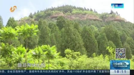 【绿水青山就是金山银山】济南: 21年坚守 他把荒山变成了森林公园