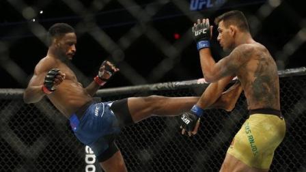 UFC安乔斯VS馬格尼