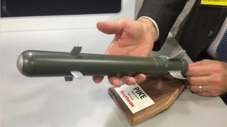 """中国造出""""袖珍""""导弹, 大小和黄瓜差不多, 专门为对付这货而研制"""