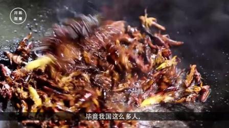 这种物种都能泛滥成灾, 政府愁坏了, 中国吃货: 需要我们帮助你们吗?