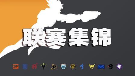 守望先锋联赛集锦9: 蒂花之秀