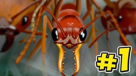 控制地下蚂蚁称霸昆虫世界
