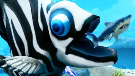 小飞象解说✘海底大猎杀 斑马鱼历险记! 从鲨鱼面前抢食物!