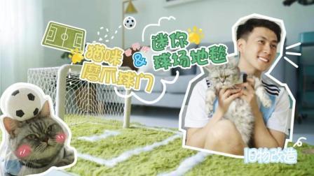 世界杯号角已吹响 做个足球场地毯和猫主子一起狂欢