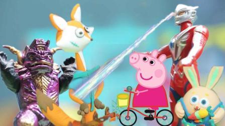 小猪佩奇球球兔保卫神奇萝卜园, 奥特曼打败帅帅狐和小怪兽!