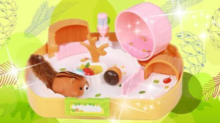 趣盒子玩具 第一季 可爱跑跑松鼠屋 仿真小宠物玩具