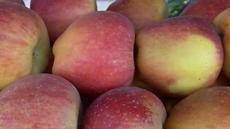 血糖升高止不住? 常吃这3种水果, 血糖立刻降下来