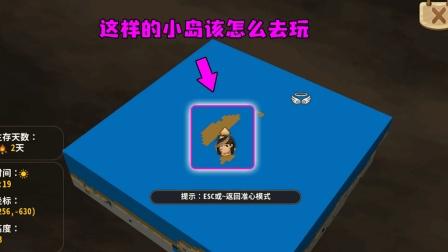 迷你世界: 小粉丝说他的生存是孤岛, 原本我以为能建地下城堡呢