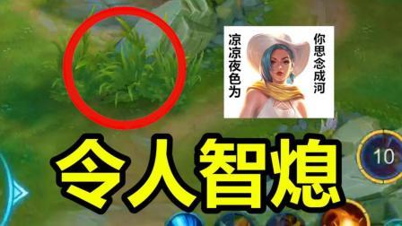 王者荣耀鲁班: 我只是朝草丛里放了一个技能! 火舞: 我是谁我在哪?