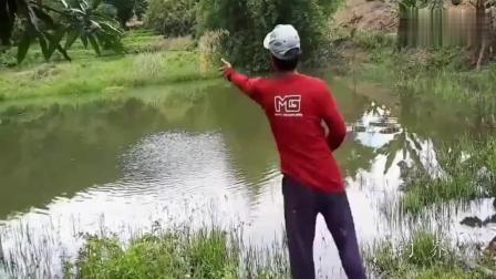 钓鱼: 这样捕鱼真是个天才, 先打窝在撒网, 我服