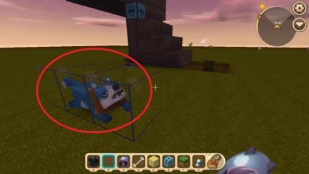 迷你世界: 阿源制作了一个透明的狗笼, 有了它小狗再也不会乱跑了