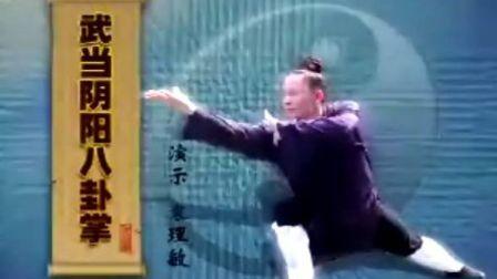 武当阴阳八卦掌 剑晨视频三
