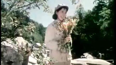 电影《白莲花》插曲:找到了幸福找到了家