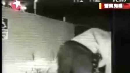 美国警察5万伏电击棒粗暴攻击女子视频暴光