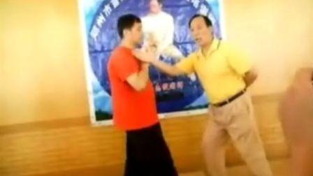 张志俊讲陈式太极拳