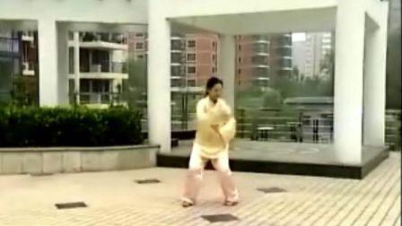 吴阿敏养生太极拂尘第二路4