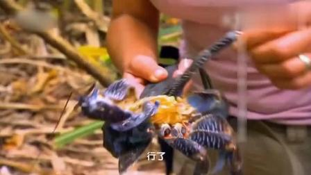 迈克夫妇身处无人海岛, 女汉子抓到蓝色椰子蟹, 块大肥美简直满分