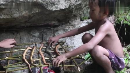 野外求生, 农村小孩在野外抓黄鳝鱼儿, 烤着吃味道太美了