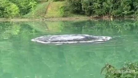 野外钓鱼, 察觉水下有动静, 手机录下的一段视频, 至今无人能解释