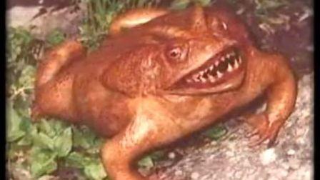 世界上最恐怖的生物